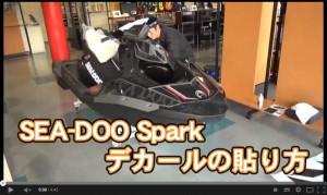 SPARK_img2