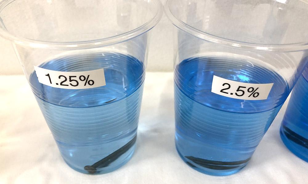 ソウトアウェイ濃度 1.25~2.5%